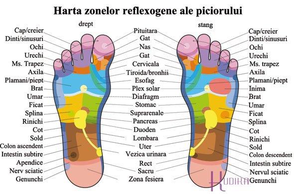 reflexoterapie limfa)